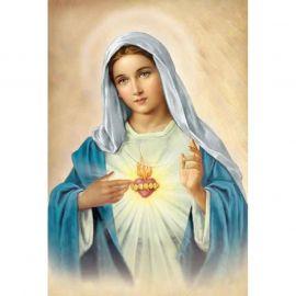 Plakat – Najświętsza Maria Panna