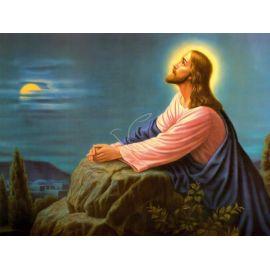 Obraz 30x40 - Jezus modlący