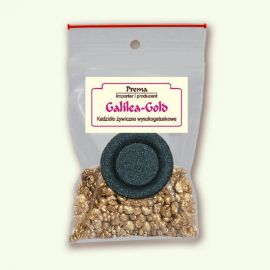 Galilea Gold - pakiet jednorazowy